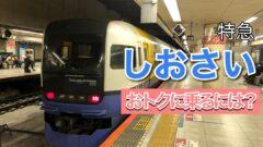 銚子へはこの列車】特急しおさいの料金・予約方法!おトクに乗る方法も解説